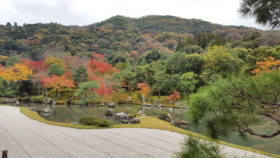 Are Zen Gardens Japanese or Chinese?
