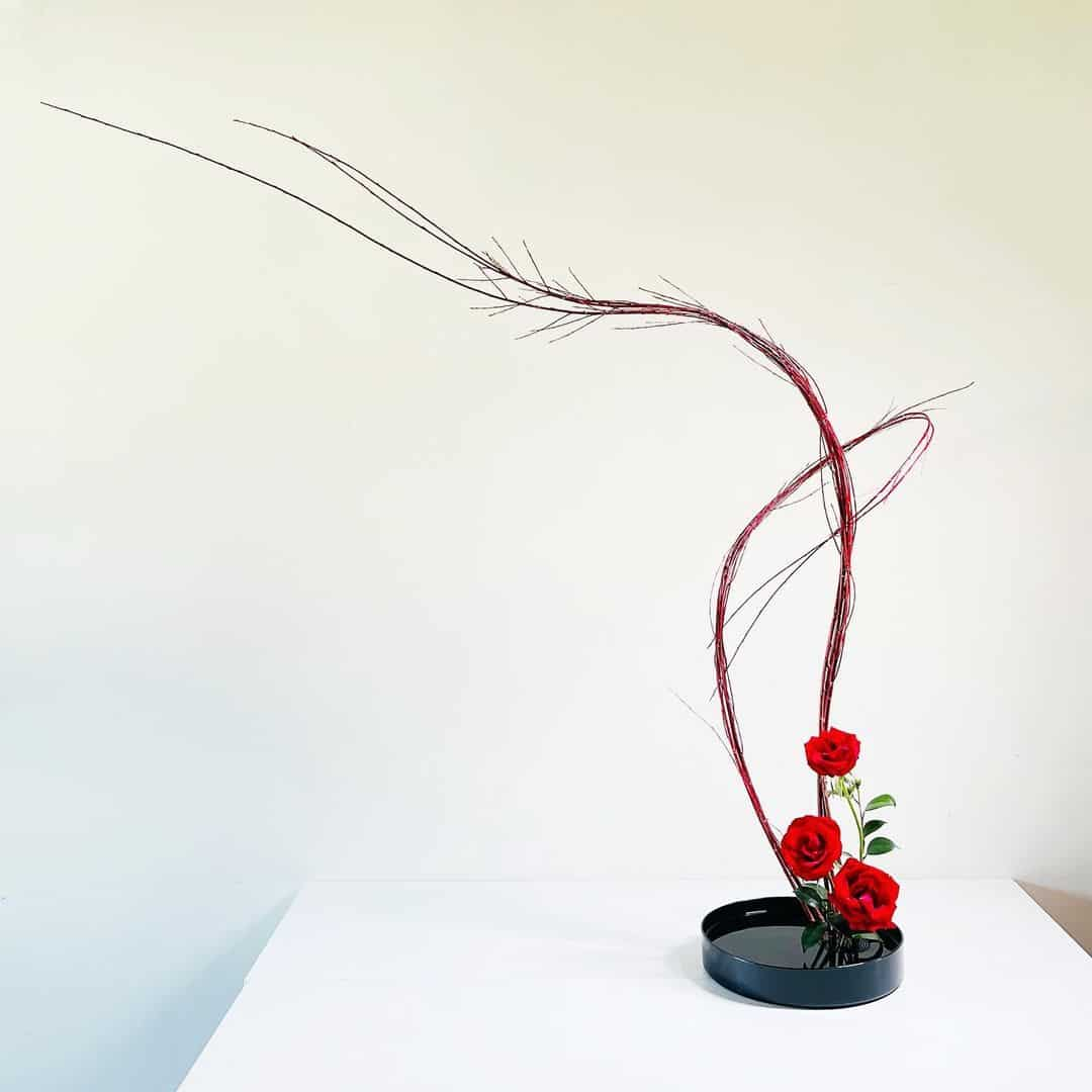 Everything You Need to Know About the Basic Principles of Ikebana